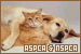 ASPCA and NSPCA